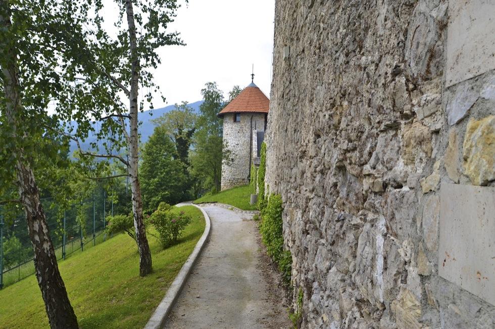 Pavus – Grad Tabor Laško